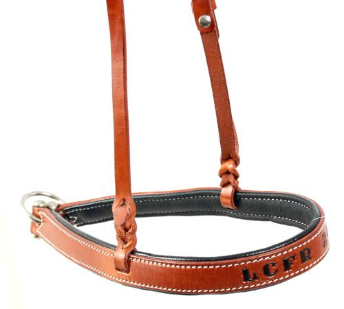 Trophy Noseband 1 CUSTOMS & AWARDS - HEADSTALLS Teskeys Teskeys