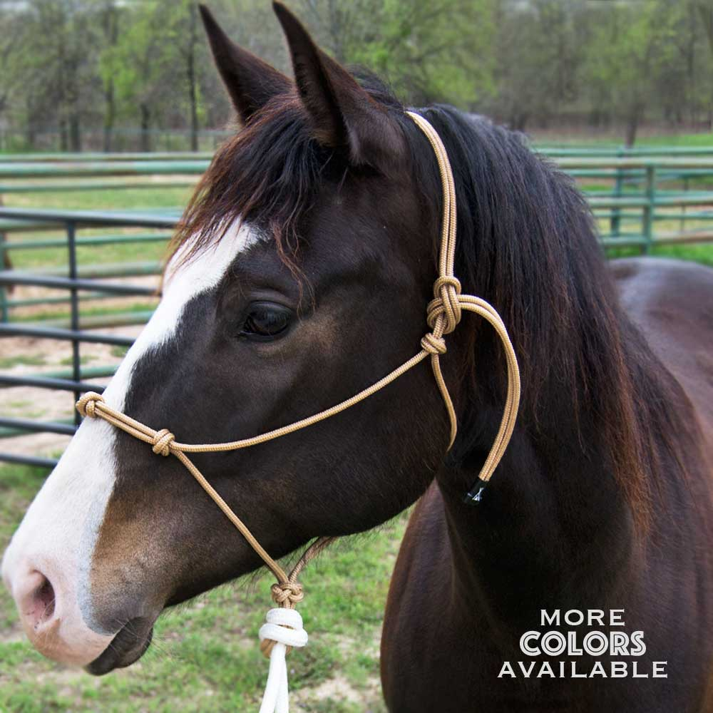 Clinicians Rope Halter with 14' Lead Tack - Halters & Leads Teskeys Teskeys