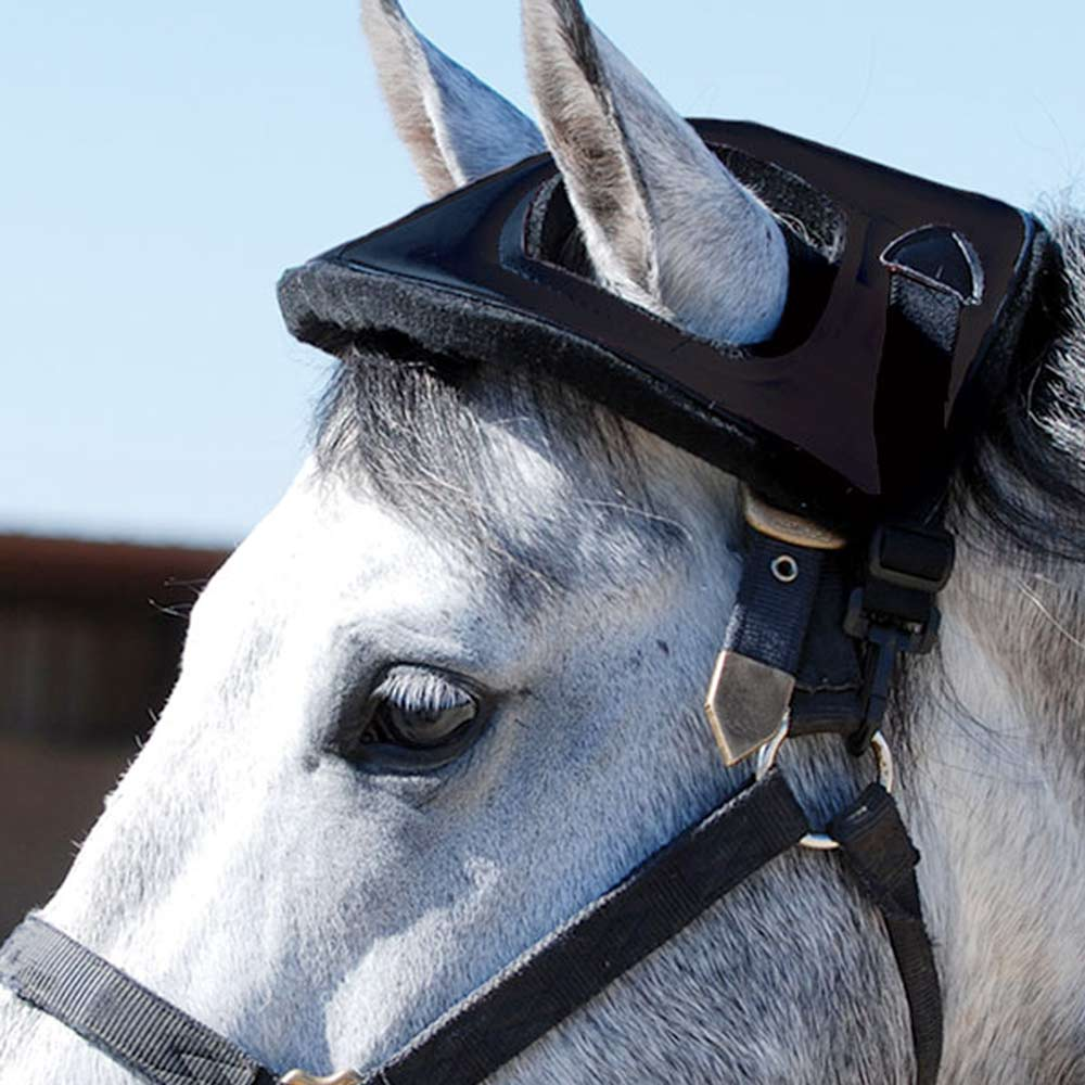 Cashel Horse Helmet FARM & RANCH - Truck & Trailer Accessories Cashel Teskeys