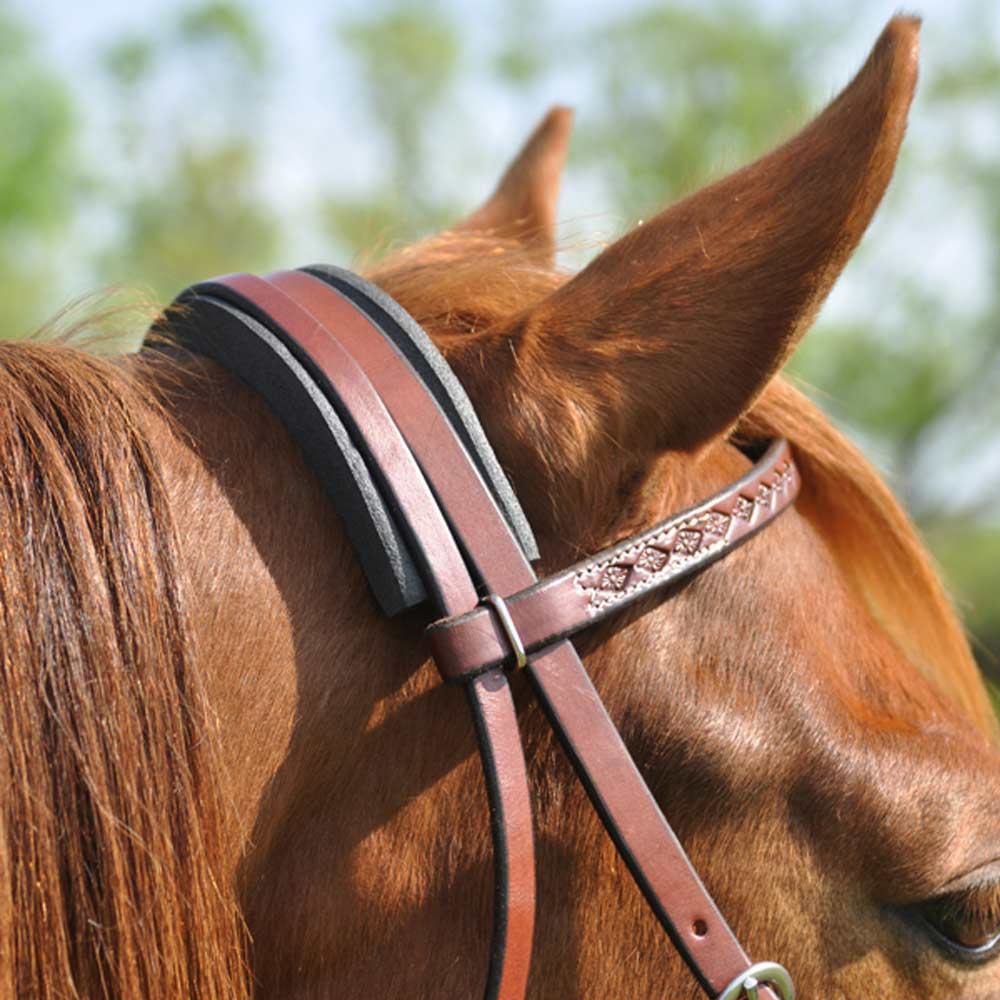 Cashel Cavesson / Crown Channel Tack - Nosebands & Tie Downs Cashel Teskeys