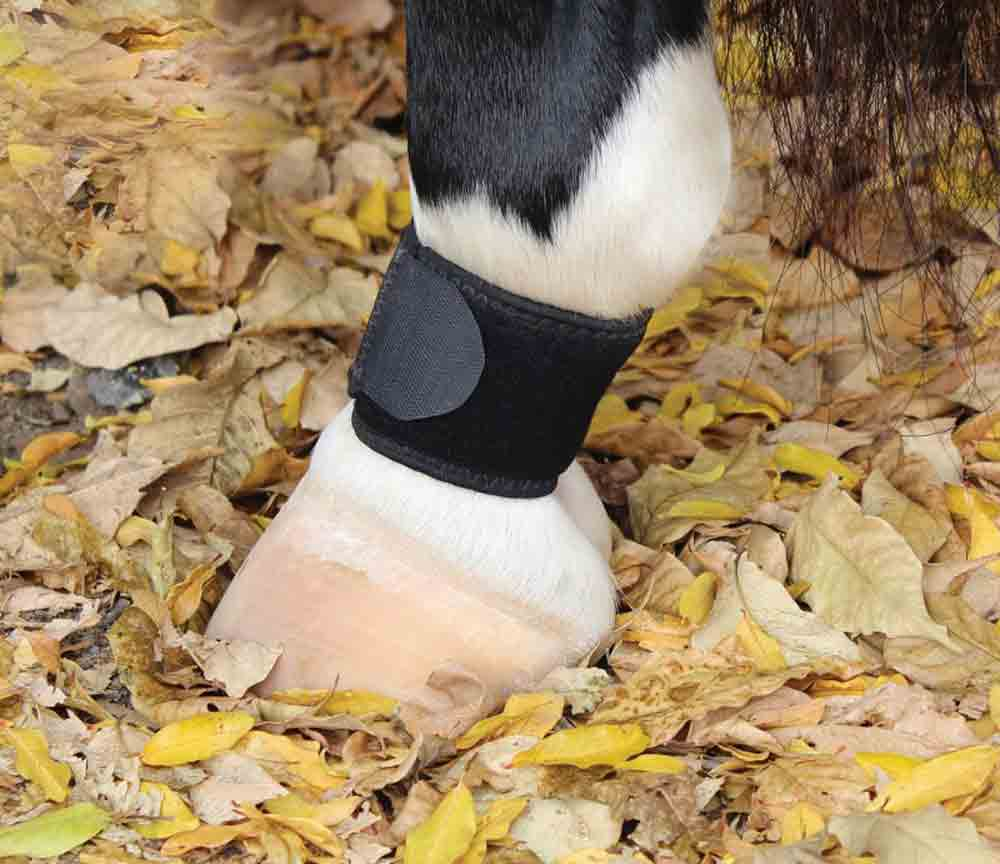 Professional's Choice VenTech Pastern Wrap Tack - Leg Protection - Rehab & Travel Professional's Choice Teskeys