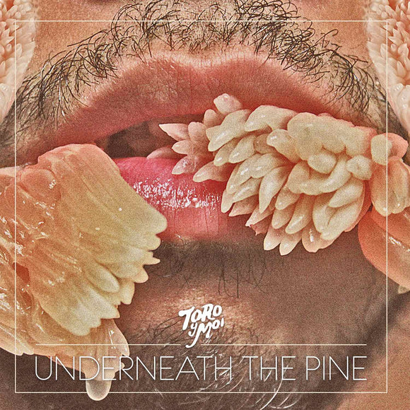 Toro Y Moi - Underneath The Pine (10th Anniversary)