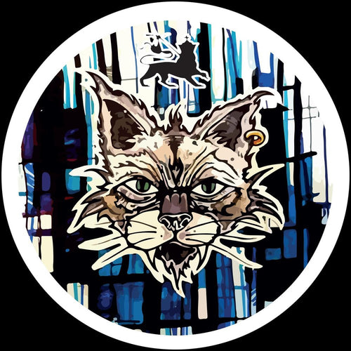 Tommy The Cat - When The Cat From The House Is