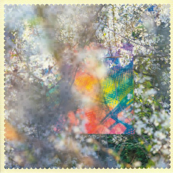 FOUR TET - SIXTEEN OCEANS [2LP]