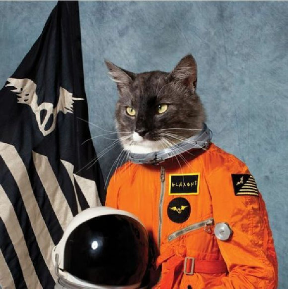 Klaxons - Surfing The Void (RSD 2020)