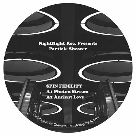 Spin Fidelity - Particle Shower