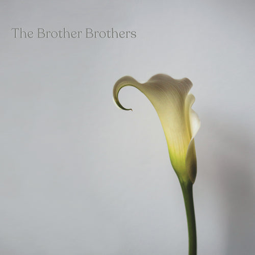 The Brother Brothers - Calla Lily [CD]