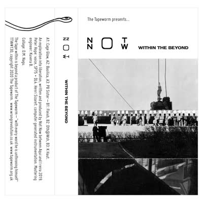 Not Now - Within The Beyond