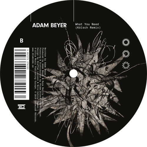 Adam BEYER - What You Need