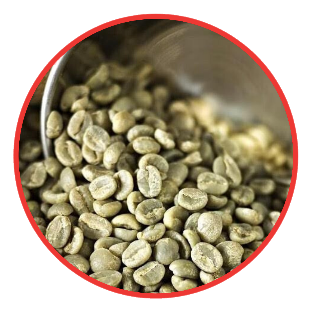 JM Advance Green Coffee | Green Coffee Beans