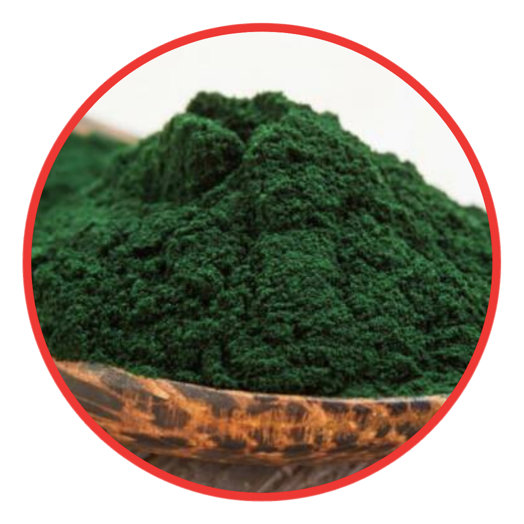 JM Advance Green Coffee | Spirulina