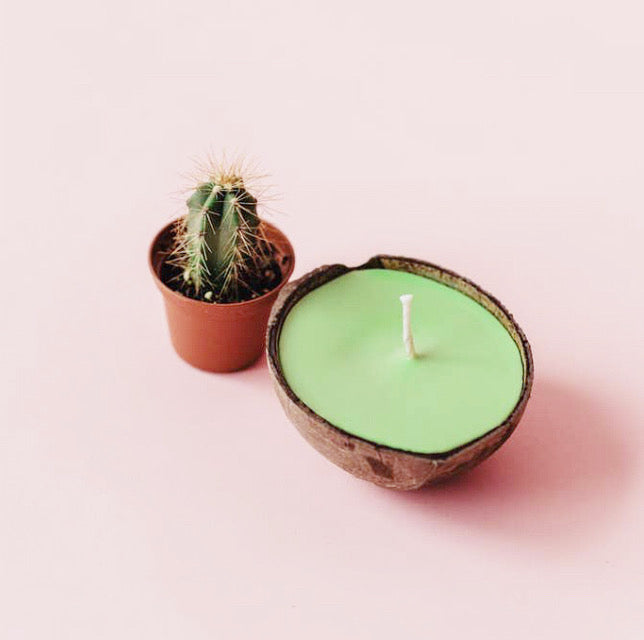 Sustainable Coconut Candles