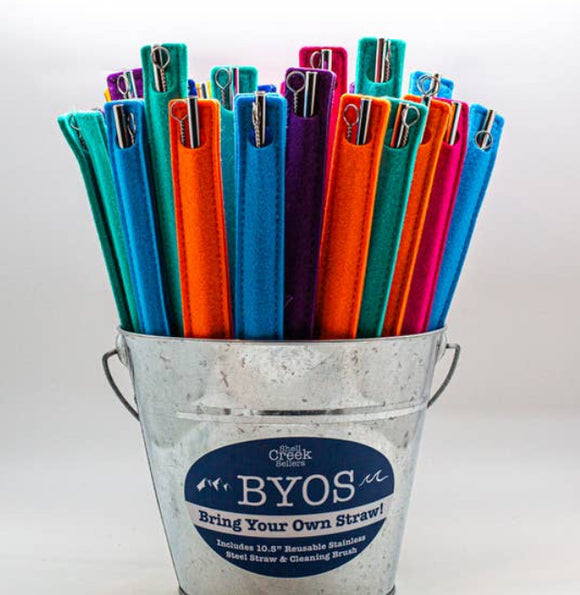 Reusable Travel Straw & Brush Set