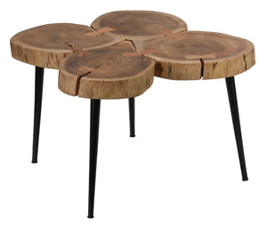 Bare Decor Tucker Metal and Wood End Table