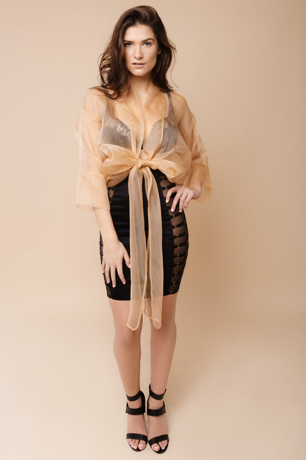 Sleek Organza Top | Murmur | Anya Lust