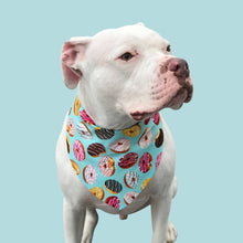 Load image into Gallery viewer, Donut Bandana for Dogs | Dog Donut Bandana