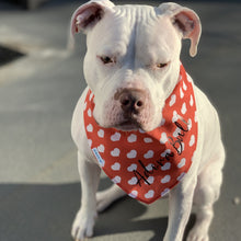 Load image into Gallery viewer, Dog Bandana- Big Hearts Dog Bandana