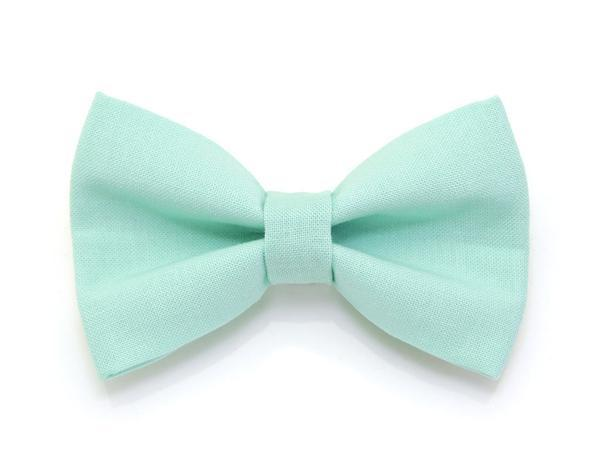 Kitten Collar - Mint