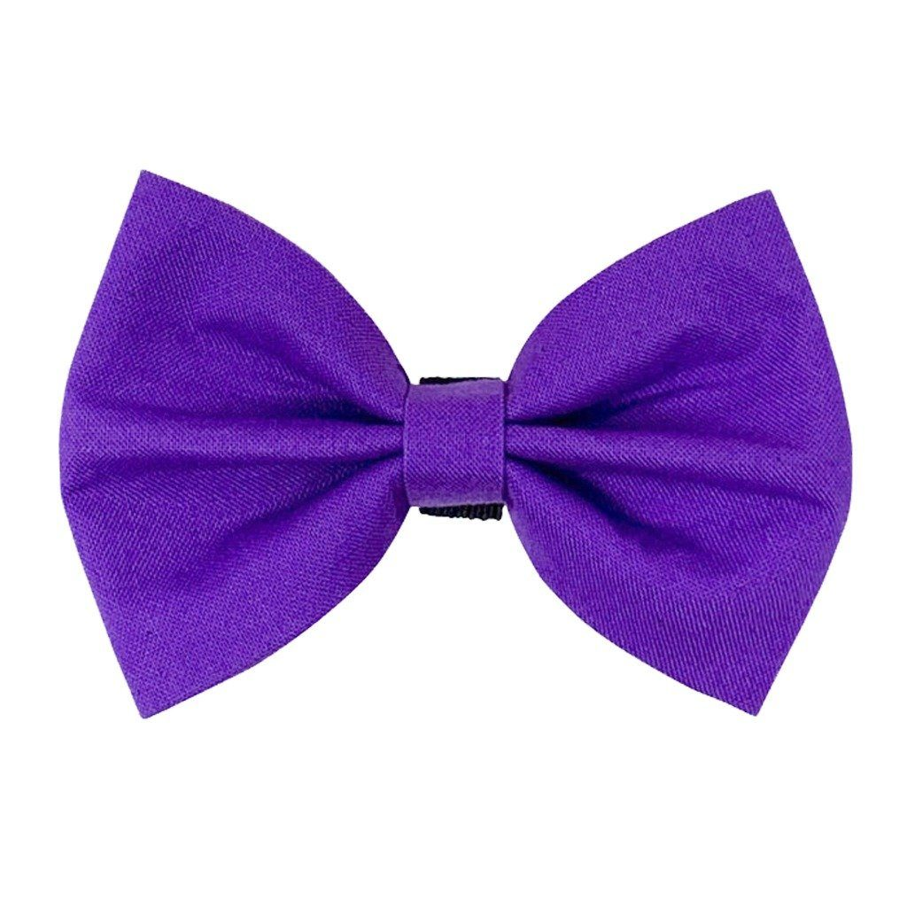 Purple Dog Bow Tie