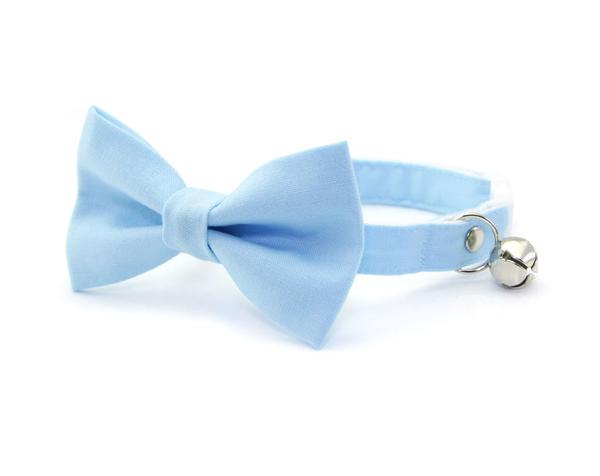 baby blue bow tie cat collar