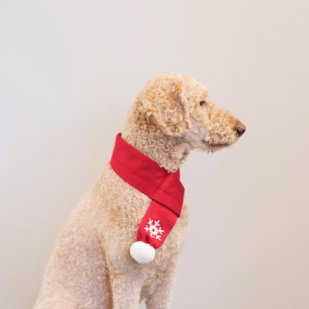 Dog Scarf | Holiday Dog Scarf