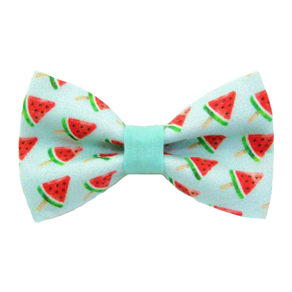 Mint Green Cat Collar & Bow Tie Set  -  Watermelon Pops