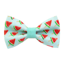 Load image into Gallery viewer, Pet Collar -  Watermelon Pops