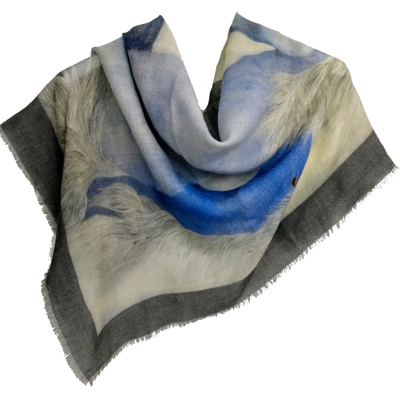 Art Scarf/Shawl