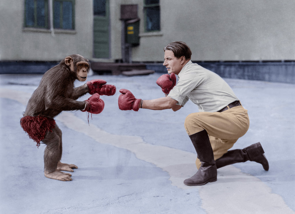 colorized photo of man playing with a monkey