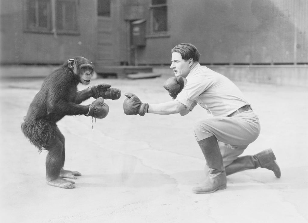 black and white photo of man playing with a monkey before colorization