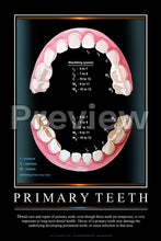 Load image into Gallery viewer, Primary Teeth Wall Chart