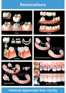 Dental-Patient Consultation Illustrations