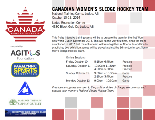 MTSO Helps Support Women's Sledge Hockey