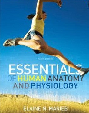 Essentials of Human Anatomy and Physiology by Marieb