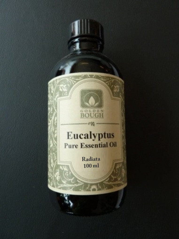 pure natural essential oil of eucalyptus radiata, 100 ml