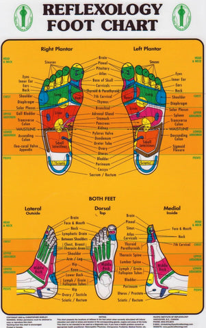 Foot Reflexology Chart (Pacific Institute)