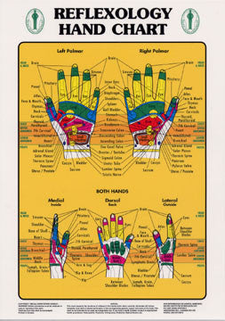 Chart illustrates hand reflexology