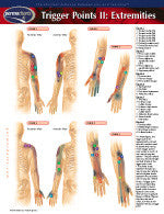 Trigger points in Extremities illustrated chart