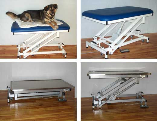 Massage Tables - electric pet treatment table