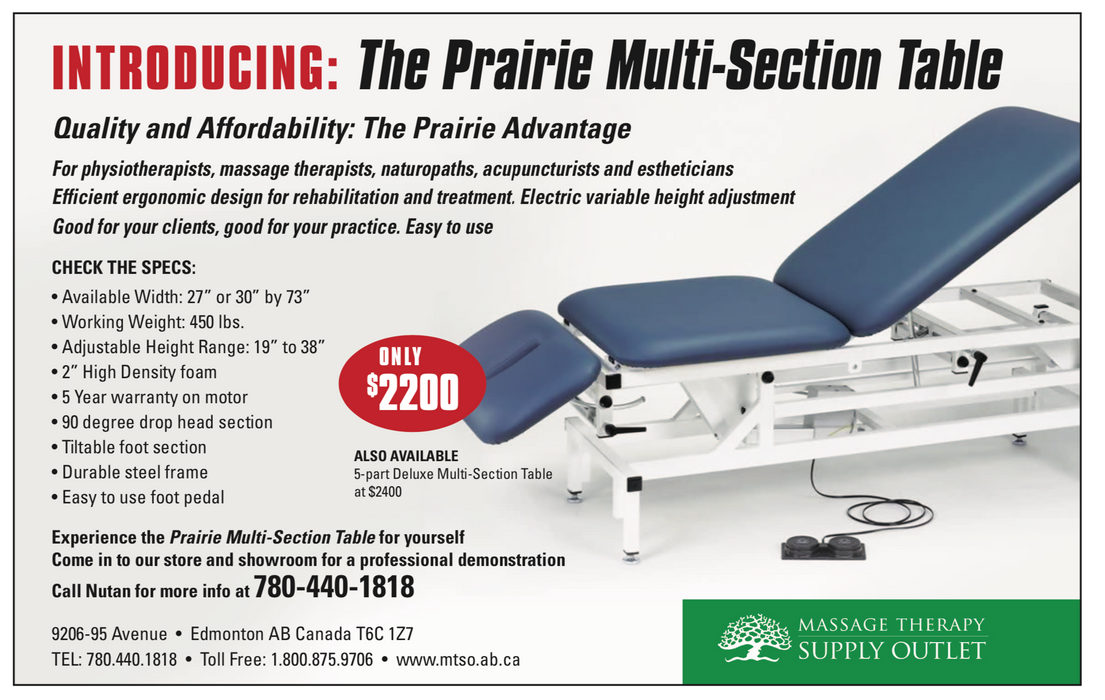 Prairie Multi-Section Physio Table