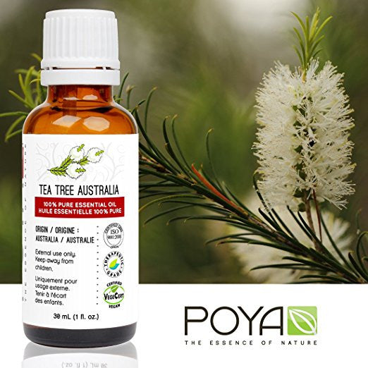 Tea Tree Australian Essential Oil
