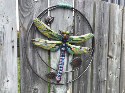 Metal Round Frame Dragonfly