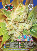 Load image into Gallery viewer, Cookies & Cream Cheese -  Big Buddha Seeds🚺