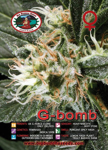 G-Bomb -  Big Buddha Seeds🚺