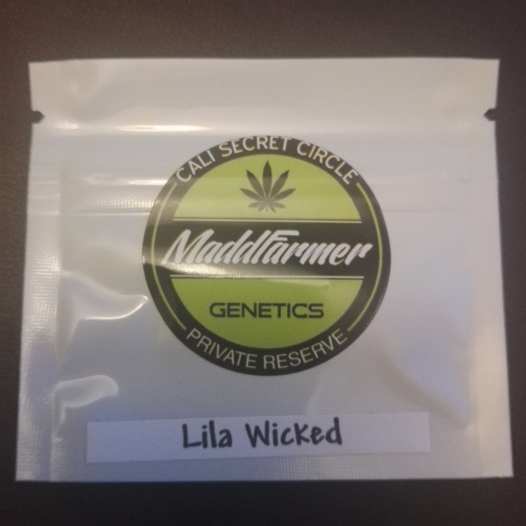 Lila Wicked - MaddFarmer 🚻💚NEW💚