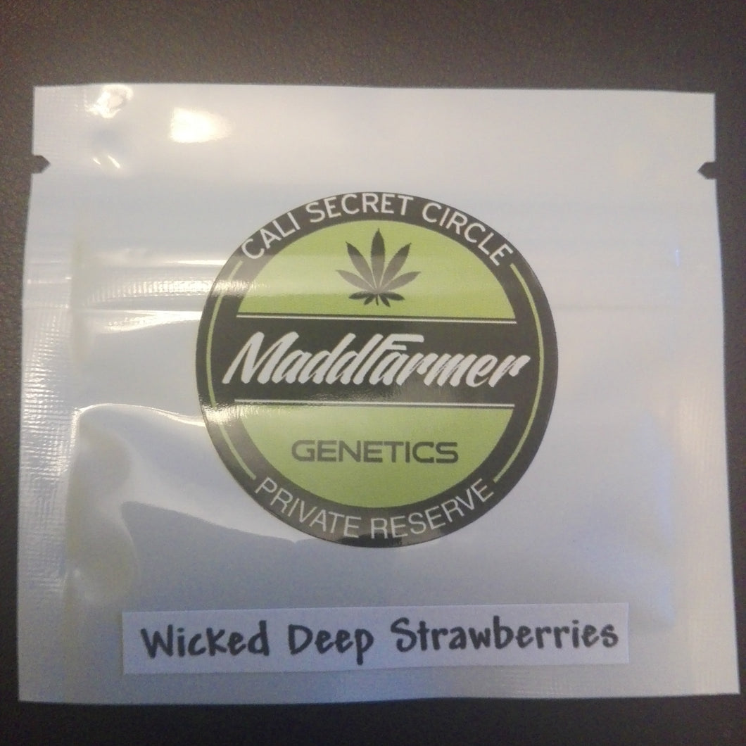 Wicked Deep Strawberries - MaddFarmer 🚻💚NEW💚