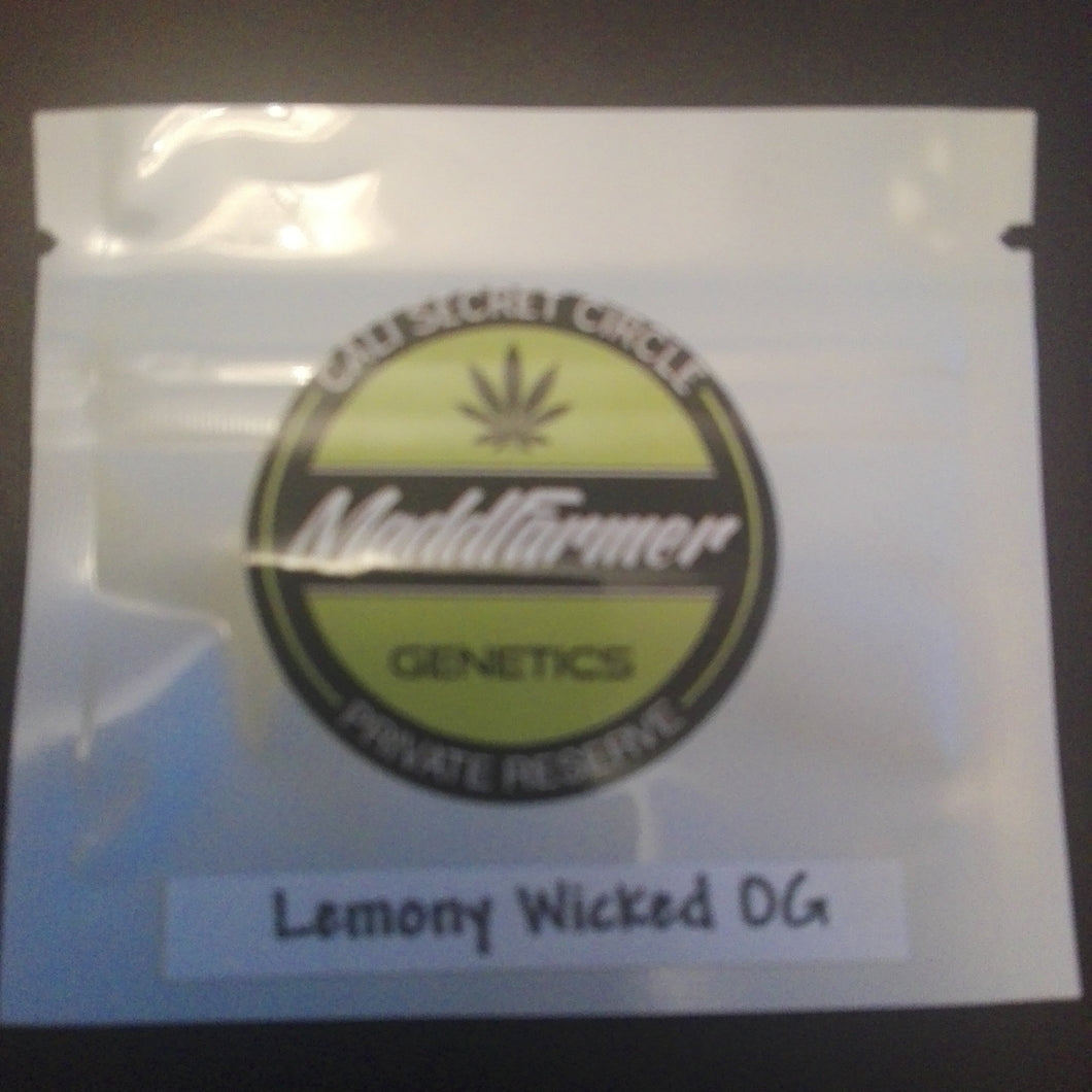 Lemony Wicked OG - MaddFarmer 🚻💚NEW💚