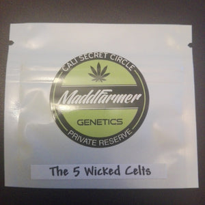 5 Wicked Celts - MaddFarmer 🚻💚NEW💚