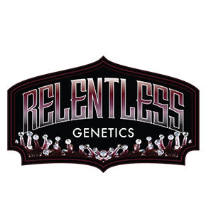 Frosted Headband - Relentless 🚺