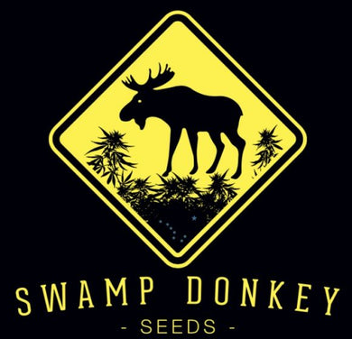 Sled Dawg - Swamp Donkey 🚻
